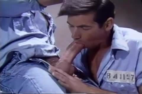 Janitor anal plow