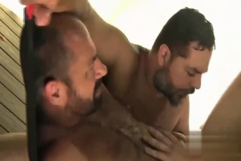 Bears raw Sling plow (with enjoyable nipple)